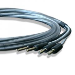 Abbey Road Monitor Bi-Wire 4mm-4mm 3.0m