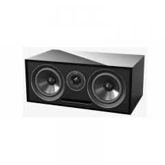 Acoustic Energy 307