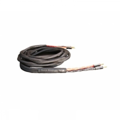 Black Rhodium ACT1 Acoustic Bi-Wire 2.5m