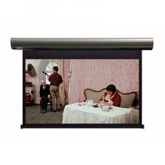 Lumien Cinema Control 187х305 см