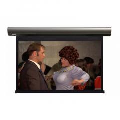 Lumien Cinema Control 241х400 см